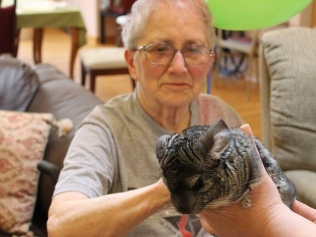 Pet Therapy Session at Heart to Home